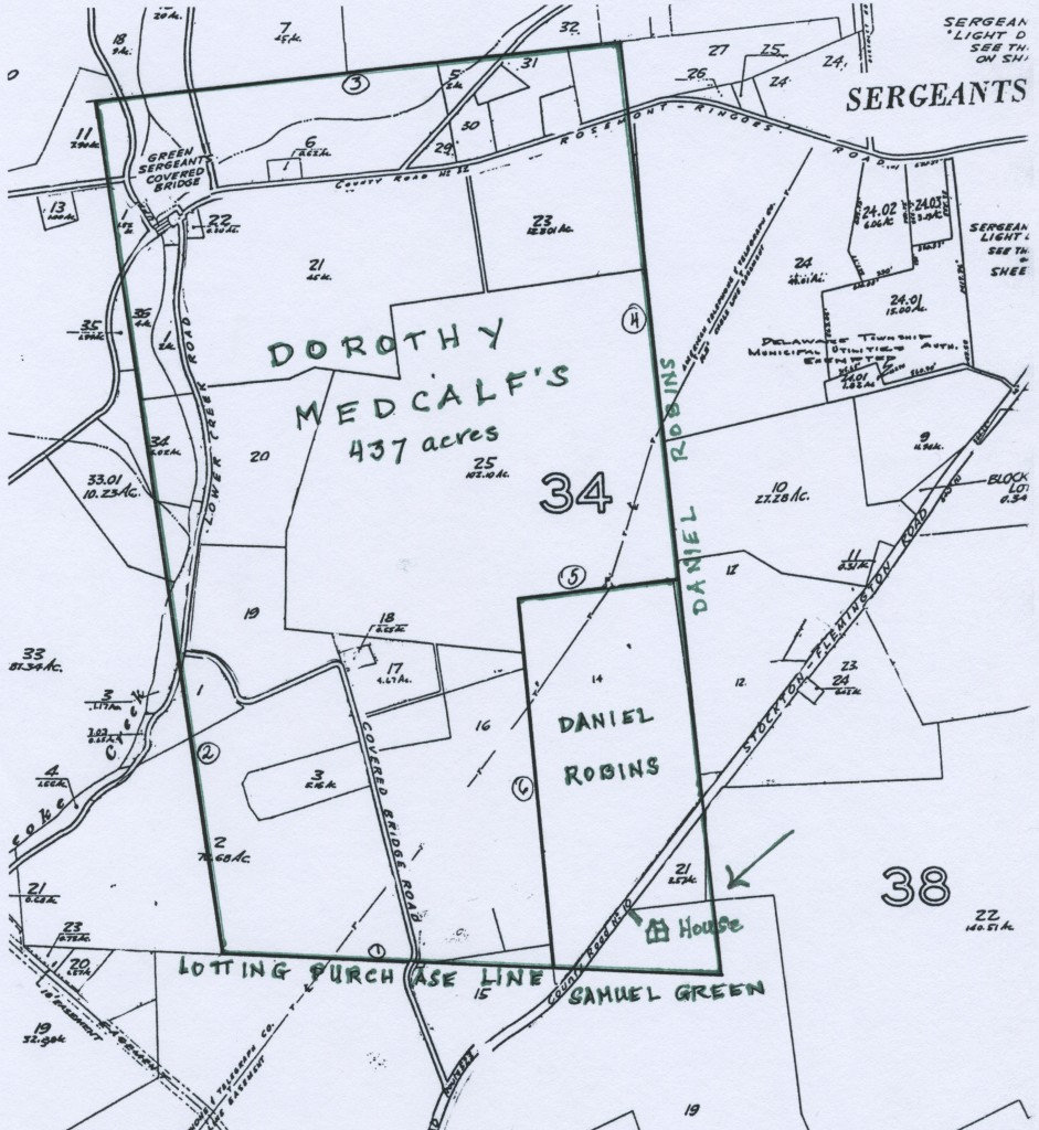 Detail of tax map with proprietary tract superimposed