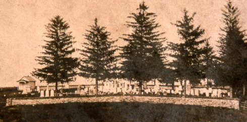 Early view of Barber Cemetery in Delaware Township