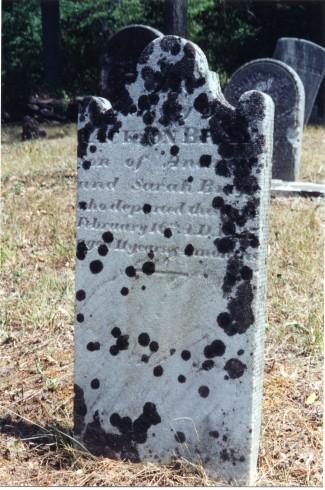 Gravestone of Jackson Bray